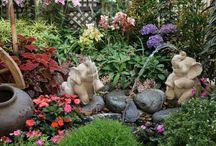 Gardening Beautiful landscape / by Edwina Washington Poindexter