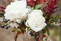 Cut Flowers / by Ann Merchant
