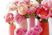 Flowers&vases / by Casita Del Detalle