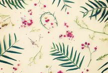Wallpapers / by Issy Jimenez