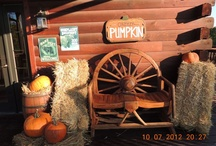 Halloween / The air is a little cooler.  The colors are a little warmer.  Fall is in the air here at Harpole's Heartland Lodge.  Enjoy your Halloween with us. / by Harpole's Heartland Lodge