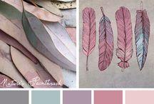Color Schemes / by Sylvia Schaefer