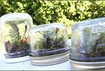 Reduce, Reuse, Recycle / by Adventure Aquarium
