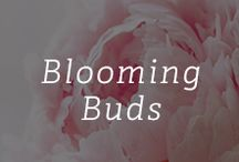 Blooming Buds / Flowers and bouquets alive with color / by Gemvara.com