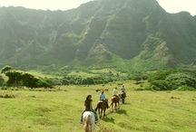 Hawaii / by Samantha Vega