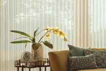 Design Trends / Some of my favorite ideas for new home decorating ideas.  http://www.toledo-window-treatments-windows-blinds-coverings-drapery.com/blog/ / by Window Treatments