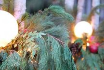 Holidays / Decorations and things to make the holidays festive. / by Sarah Warren Fettig