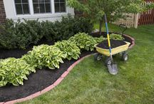 Make the Yard Pretty / Lands. and Scaping. / by Cari Schroeder