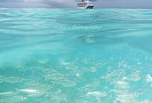 Cruise / Pics taken during a cruise / by Rick Benoit