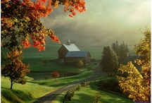 Autumn Bliss / by Julie Smith Campbell