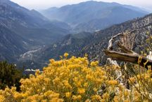 SoCal Hiking / by WALK SIMPLY Outdoors, Hiking, Walking, Play