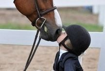 Sweet moments and Artistic shots / Sweet moments with horses and humans / by Offaly Pietri
