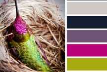 Color Inspiration / by byMelissaBee (Melissa Martheze)