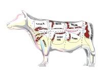 Meat / by Bottlerocket Wine & Spirit