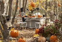 Autumn / by Town and Country Living