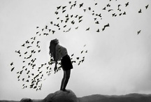 I want to fly free / by Heidi Young