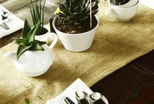 pretty flowers, succulents, & plants / by Charlotte Tripson