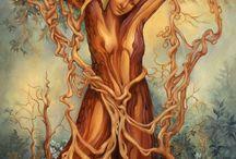 TREE of LIFE / by Tim Hancock