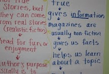 Anchor charts / by Earlann Hartley