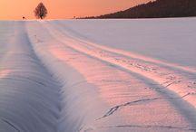 Winter / by Stuart Holderness