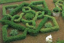 In The Garden / by Karen Rice