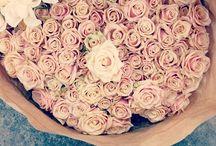 Flowers♡ / by Imke Supra