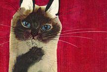 cats / by Pera Palace