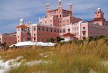 Wedding Venue - Don CeSar Resort / by Virginia Bishop