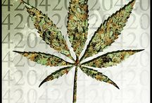 Marijuana Graphics / by Cannabis Now Magazine