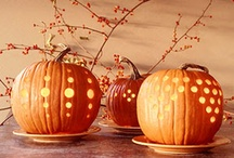 halloween / by Seana Quinlan