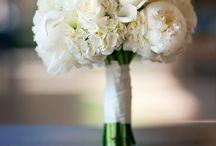 flowers / by Jennifer Kristine