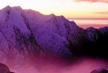 Purple / by Hope Jorde Ficarro