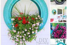 Watch my garden grow / by Christina Marie {Christina's Adventures}