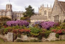 Oxford / by Victoria Hinshaw