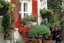 I love gardening! / by Dora Kelly