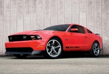 2010 Ford Mustangs / 2010 Ford Mustangs / by StangBangers