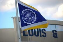 Blue and Gold / by UA Alumni Association