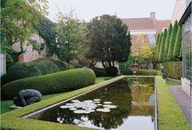 Contemporary Gardens / by Ian Robertson