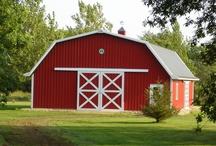 Mama wants a barn / by Bryn Zuarri-Davis
