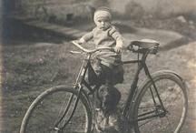 Bikes / by Helena Scheibe