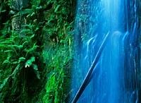 Waterfalls! / by Debbie Cross
