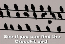Crossfit / by Marianne Escalon