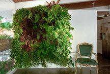 Garden Interiors / by Ellis Home and Garden