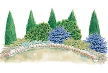 Landscaping / by Ashly Pickering
