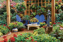 Container Gardening / by Debbie Mayfield
