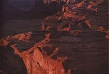 Desert / by Judy Stierle