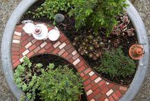 How does your garden grow... / by Becky Harrington