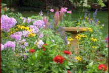 Gardens / by Patricia Pruitt