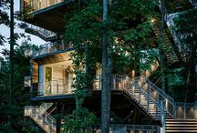 Photography {Places:Treehouses} / by Danielle Ward