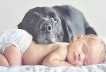 Photo Ideas for Baby! / by Missy Murphy